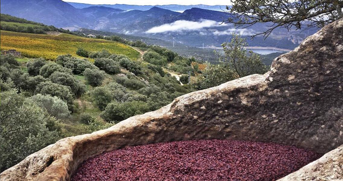Lagar de piedra en la Rioja Alavesa
