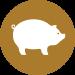 Porc Aus